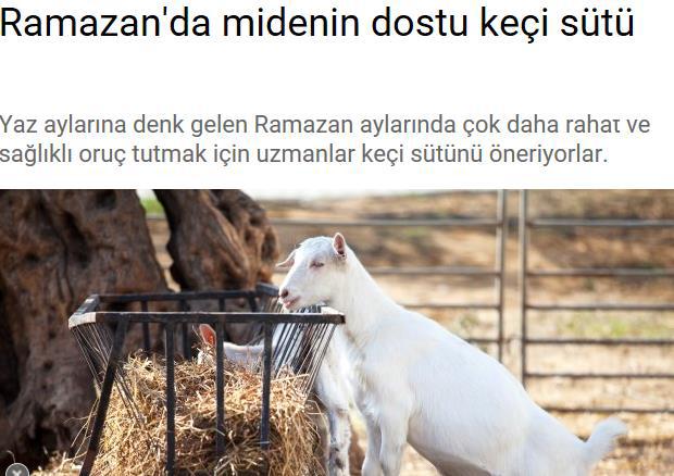 ramazan31