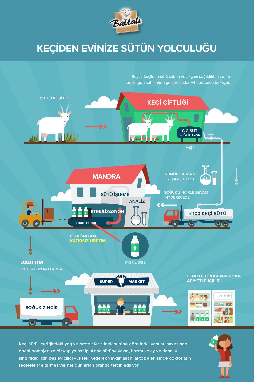 sutun-yolculugu-infographic